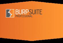 使用Frida配合Burp Suite追踪API调用