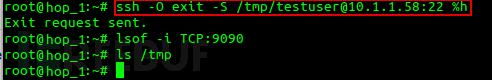 SSH会话劫持实现端口转发