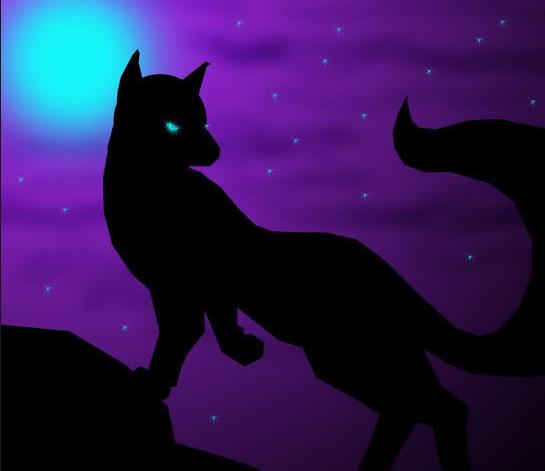 """""""黑狐""""木马详细分析"""