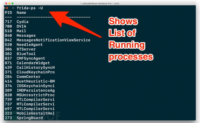 frida-show-list-of-running-processes.png