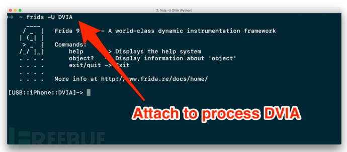 attaching-to-a-process-using-Frida.png