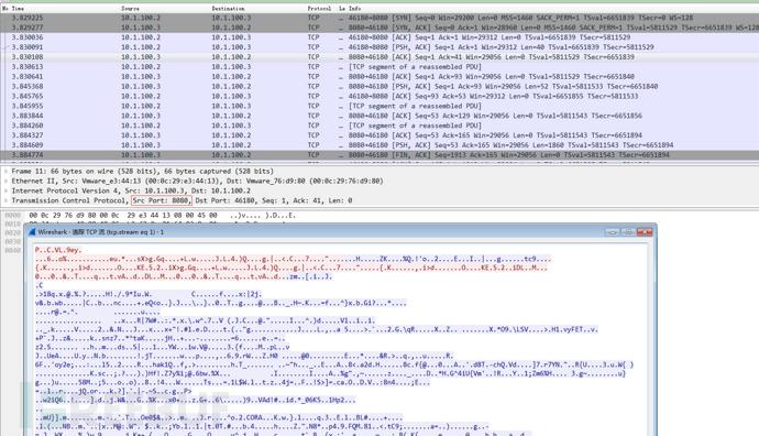 短小精干的Unix类后门Tiny shell的使用与分析