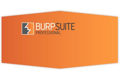 Burp Suite扫描器漏洞扫描功能介绍及简单教程