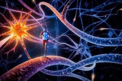 如何利用神经网络和Python生成指定模式的密码