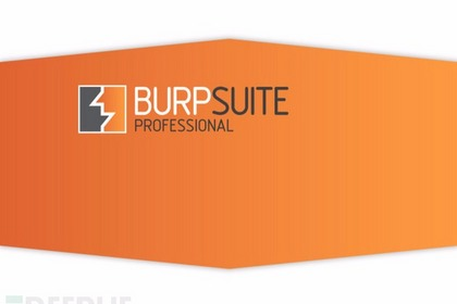 如何在特定的渗透测试中使用正确的Burp扩展插件