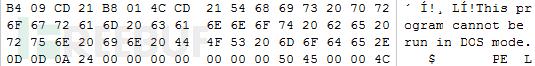 图2-2-10 图片中监测到的PE文件特征.png