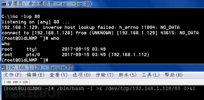 linux_dev_tcp.png