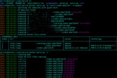 SQLiv:一款批量SQL注入漏洞扫描工具