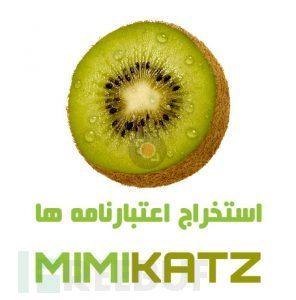 201.mimikatz.commands.0-296x300.jpg