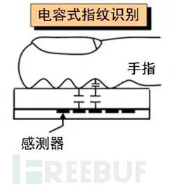 电容指纹识别模块原理
