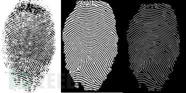 对指纹印章进行预处理、图像增强、细化后的结果