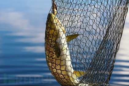 网络钓鱼威胁增大,财富500强公司继续成为支付欺诈对象