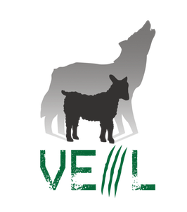 veil.png