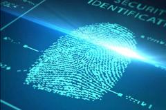 服务器端口指纹信息收集处理