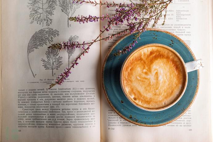 coffee-2151200_1280.jpg