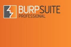 初探Burp Suite API 开发