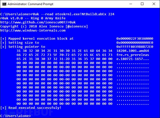 R0Ak:一款针对Windows 10的内核模式代码读取、写入和执行的测试工具