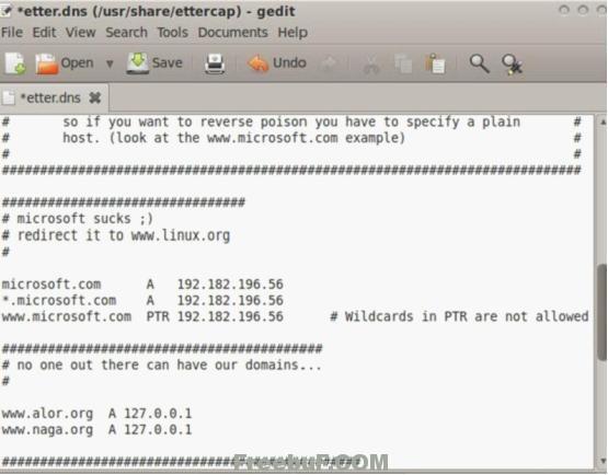 中间人攻击-DNS欺骗