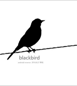 黑鸟威胁情报中心