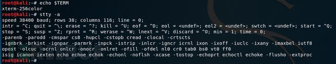 如何将简单的shell转换成为完全交互式的TTY