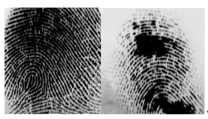 光学指纹模块采集到的图像以及手上有水时的成像