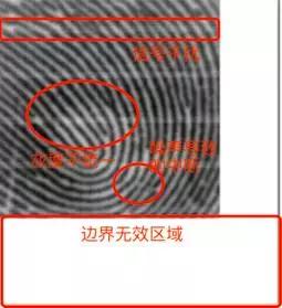 电容传感器采集到的指纹图像以及存在的问题