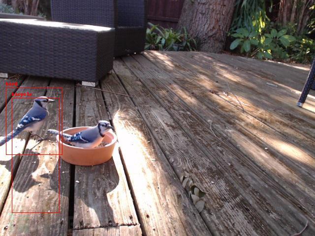 Python+树莓派+YOLO打造一款人工智能相机