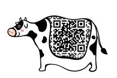 如何用二维码钓出你的支付信息   极客沙龙