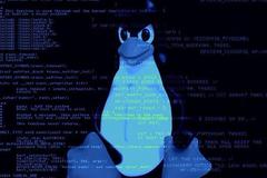 Linux本地内核提权漏洞(CVE-2017-7184)