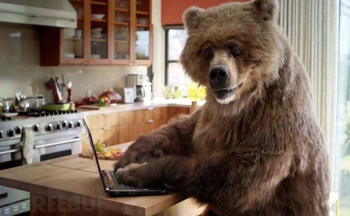 Bear Hacker.jpg