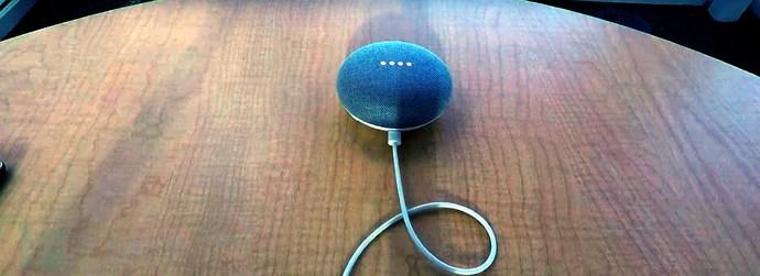 Alexa+Google-Voice-Squatting.jpg