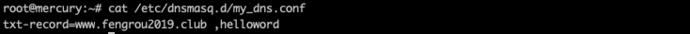 图5TXT记录创建.png