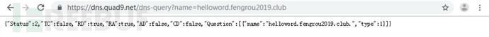 图8向DNS服务器发送helloword.png