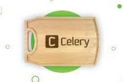 celery超时机制小结