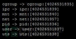 Docker容器安全性分析
