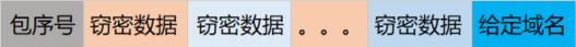 8 - DNSExfiltrator窃密数据包的组成结构.png