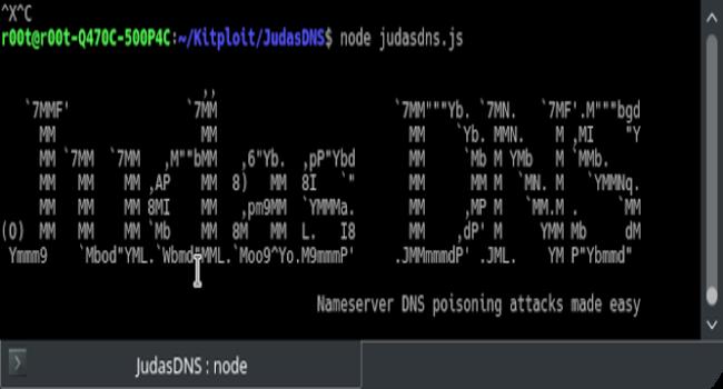JudasDNS:域名服务器