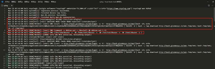 Docker化自动采集&模拟恶意软件环境插图(10)