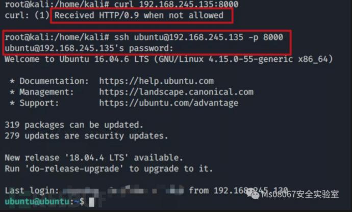 一文打尽 LinuxWindows端口复用实战